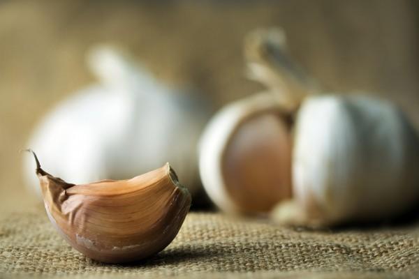 photodune-10062916-garlic-m